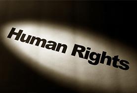 Asylum and Human